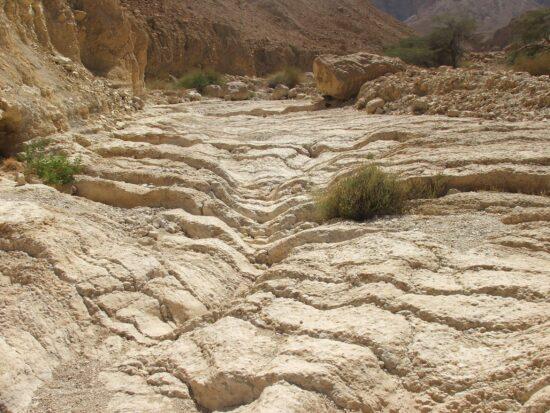 מסלולי טיול בנחל רחף ונחל משמר